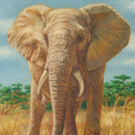 """Wildlife Art Elephant Image"""