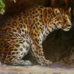 """Wildlife Art Big Cat Image"""