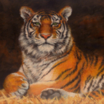"""Wildlife Art Big Cat Oil Painting"""