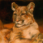 """Wildlife Art Mountain Lion"""