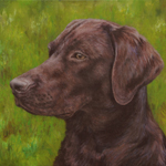 Retriever Dog Portrait Art Oil on Canvas Panel